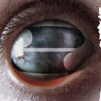 Filter - Crazy Eyes (CD)