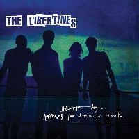 Libertines, The - Anthems For Doomed Youth (CD)