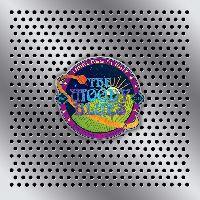 Moody Blues, The - Timeless Flight (CD)